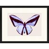 LivCorday Butterfly Series 40 Framed Graphic Art
