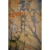 David & David Studio 'Japanese Branches 2' by Laurence David Framed Graphic Art