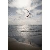 "David & David Studio Gerahmtes Poster ""Beaches North 1"" von Philippe David, Fotodruck"