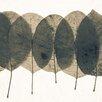 "David & David Studio Gerahmtes Poster ""Pressed Leaves 1"" von Philippe David, Grafikdruck"