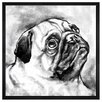 The Art Cabinet Pug by Hatcher and Ethan Framed Painting Print