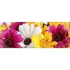Pro-Art Glasbild Colourful Spring II, Kunstdruck