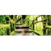 Pro-Art Mossy Bridge Painting Print Glass Art