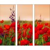 Pro-Art Summer Poppy Field Painting Print Glass Art