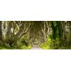 Pro-Art Sparkling Forest Painting Print Glass Art