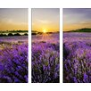 Pro-Art Beautiful Lavender Painting Print Glass Art