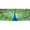 Pro-Art Der Pfau Painting Print Glass Art