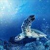 Pro-Art Blue Sea I Painting Print Glass Art
