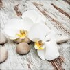 Pro-Art White & Yellow Flowers IV Painting Print Glass Art