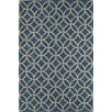 The Conestoga Trading Co. Light Blue Indoor/Outdoor Area Rug
