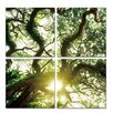 Latitude Run Shine 4 Piece Photographic Print on Canvas Set