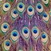 Salty & Sweet Leinwandbild Peacock Feathers, Grafikdruck