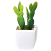 Mercury Row Alamak Desk Top Plant in Decorative Vase