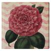 Lily Manor Striped Camellia Graphic Art Wrapped on Canvas
