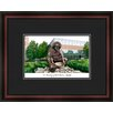 Campus Images NCAA University of North Carolina, Charlotte Academic Lithograph Framed Photographic Print