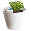 Nimbus Self-Watering Vinyl Pot Planter - Crates & Pallet Planters