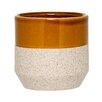 Creger Ceramic Pot Planter - George Oliver Planters