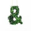 "Vandue Corporation Modern Home 7"" Boxwood Wreath"
