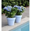 Slesnick Plastic Pot Planter - Size: 7.75 inch High x 6.75 inch Wide x 6.75 inch Deep - Color: White - Winston Porter Planters