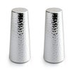 Aulica 2 Piece Salt and Pepper Shaker Set