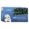 The Seasonal Aisle LED 600 Light String Lighting