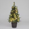 The Seasonal Aisle 4' Green Artificial Christmas Tree with 50 Warm White LED Lights with Pot