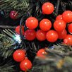 The Seasonal Aisle LED Berry Xmas 20 Light String Lighting (Set of 5)