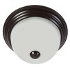 Y Decor 2 Light Flush Mount