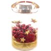 Dreamlight Teelichthalter Candela Classic Christmas Berries aus Glas