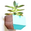 Revolution Design House Boxcar Rectangle Wall Planter