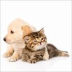 PRO ART 'Cat & Dog' Photographic Print