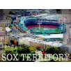 Graffitee Studios Views from the Pru 'Sox Territory' Graphic Art on Wrapped Canvas
