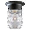 Westinghouse Lighting 1 Light Flush Mount
