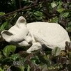 Sleeping Kitten Statue - Designer Stone Inc Garden Statues and Outdoor Accents