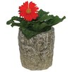 Trunk Resin Pot Planter - Size: 7 inch High x 6.5 inch Wide x 6.5 inch Deep - Expo Decor LLC Planters
