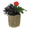 Trunk Resin Pot Planter - Size: 9.25 inch High x 8.5 inch Wide x 8.5 inch Deep - Expo Decor LLC Planters