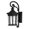Hinkley Lighting Raley 1 Light Outdoor Wall Lantern