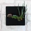Hip To Be Steel Wall Planter - Color: Black - Urban Mettle Planters