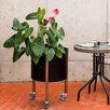 Oasis Solid Steel Pot Planter - Color: Black - Curonian Planters