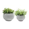 Cozie 2-Piece Plastic Pot Planter Set - Color: Oasis White - Keter Planters