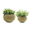 Keter Cozie 2 Piece Round Pot Planter Set