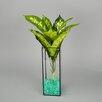 Rectangular Glass Terrarium - Vasesource Planters