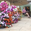 Flower Tower Resin Vertical Garden - Apollo Exports International Inc. Planters