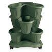 Trifoglio Resin Vertical Garden with Saucer - Color: Green - Apollo Exports International Inc. Planters
