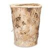 Stultz Round Birch Bark Pot Planter - Millwood Pines Planters