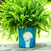 Elizabella Seashell Stoneware Pot Planter - Highland Dunes Planters