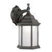 TransGlobe Lighting 1 Light Outdoor Wall Lantern