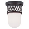 Livex Lighting Westfield Flush Mount