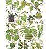 "Marimekko Volume 4 Ikkunaprinssi 33' x 21"" Botanical Wallpaper"