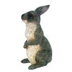 Michael Carr Peter Rabbit Statue